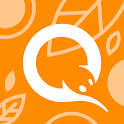 QIWI Wallet icon