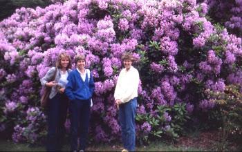 Photo: Kew Gardens