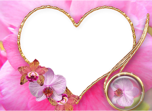 pink heart frames screenshot