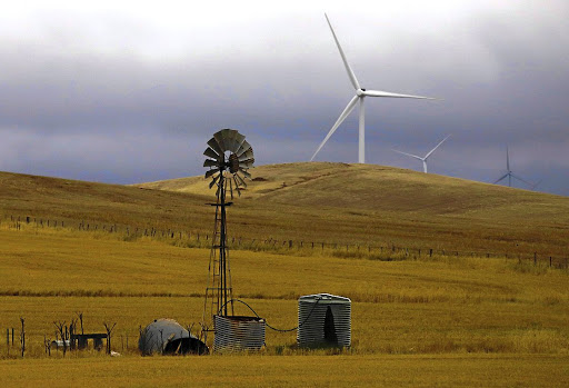 Wind power is just one of many renewables that SA needs to start taking seriously. REUTERS/DAVID GRAY