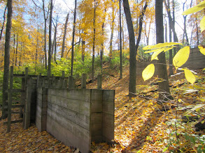 Photo: Golden trees and autumn leaves around a wooden structure at Hills and Dales Metropark in Dayton, Ohio.