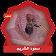 القرآن الكريم - سعود الشريم APK