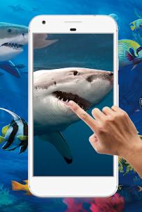 Shark Water Ripple Live Wallpaper 2