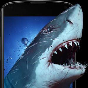 Shark Attack Live Wallpaper приложение для Android скачать