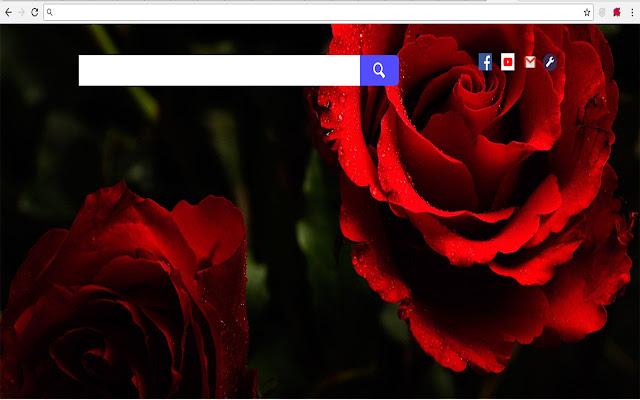 Roses New Tab - Full HD Wallpaper