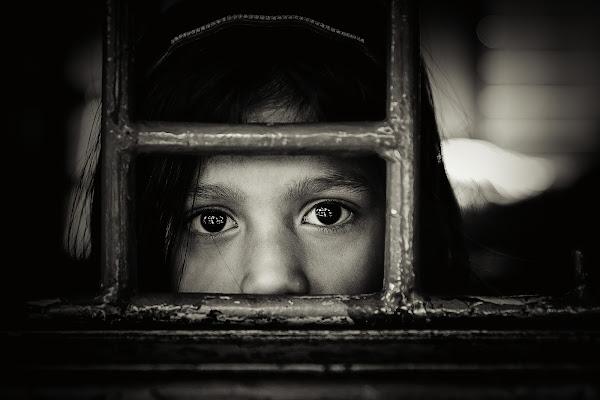 Curiosità... di Gloria Staffa