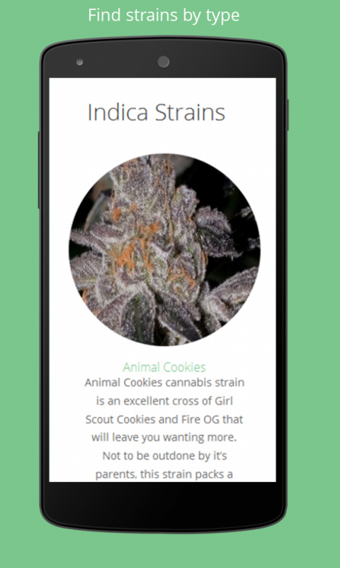 Strain Spot Marijuana Info- screenshot