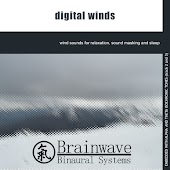 Digital Winds