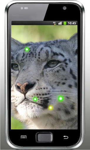 Snow Leopard Eyes HD LWP