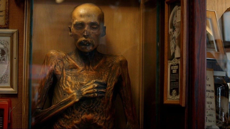 Watch Mummies Alive live