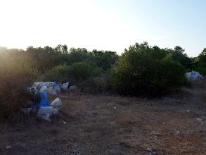 Photo: Abocaments al camí de Cales Coves