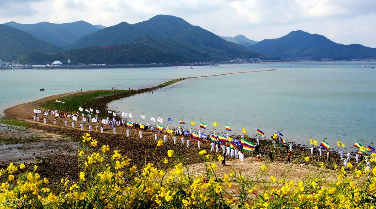 miracle sea road festival