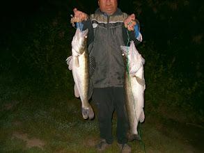 Photo: Keserű István, 5.4 és 3.5 kilós süllő, 2005. szeptember