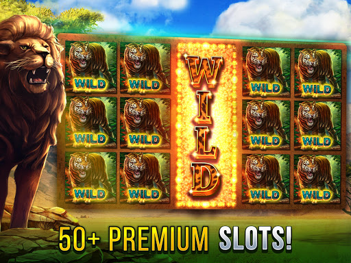 Cats Slot Machines 2.8.3110 screenshots 1