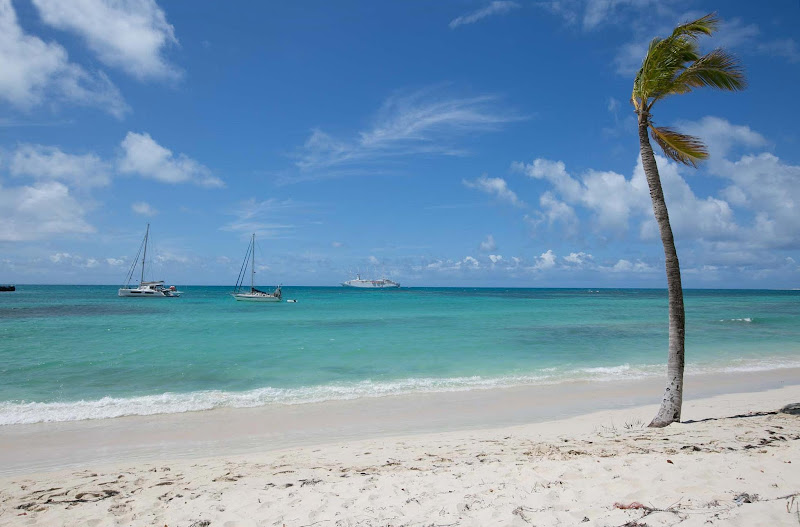 A palm tree in Barbuda wafts in the Caribbean breeze with Wind Surf anchored in the bay.