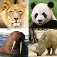 Animals Quiz - Learn All Mammals, Birds and more!