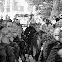 La Marcia Dei Monaci di