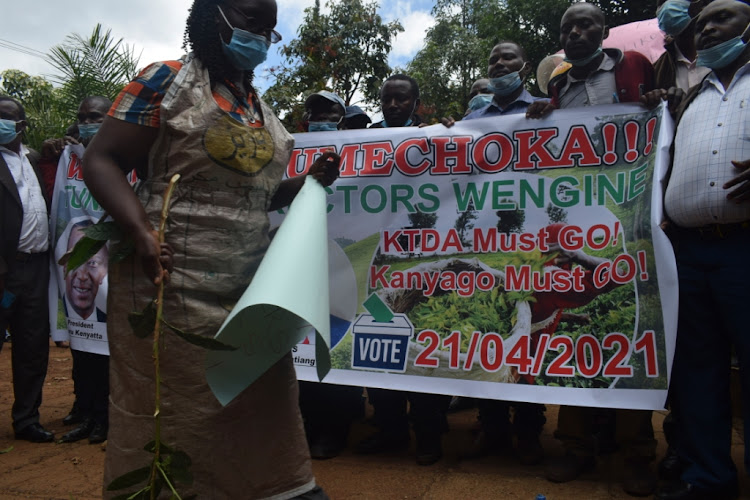 Tea farmers protest at Nteere park gardens in Meru