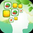 Brain Training - Super Memory Training