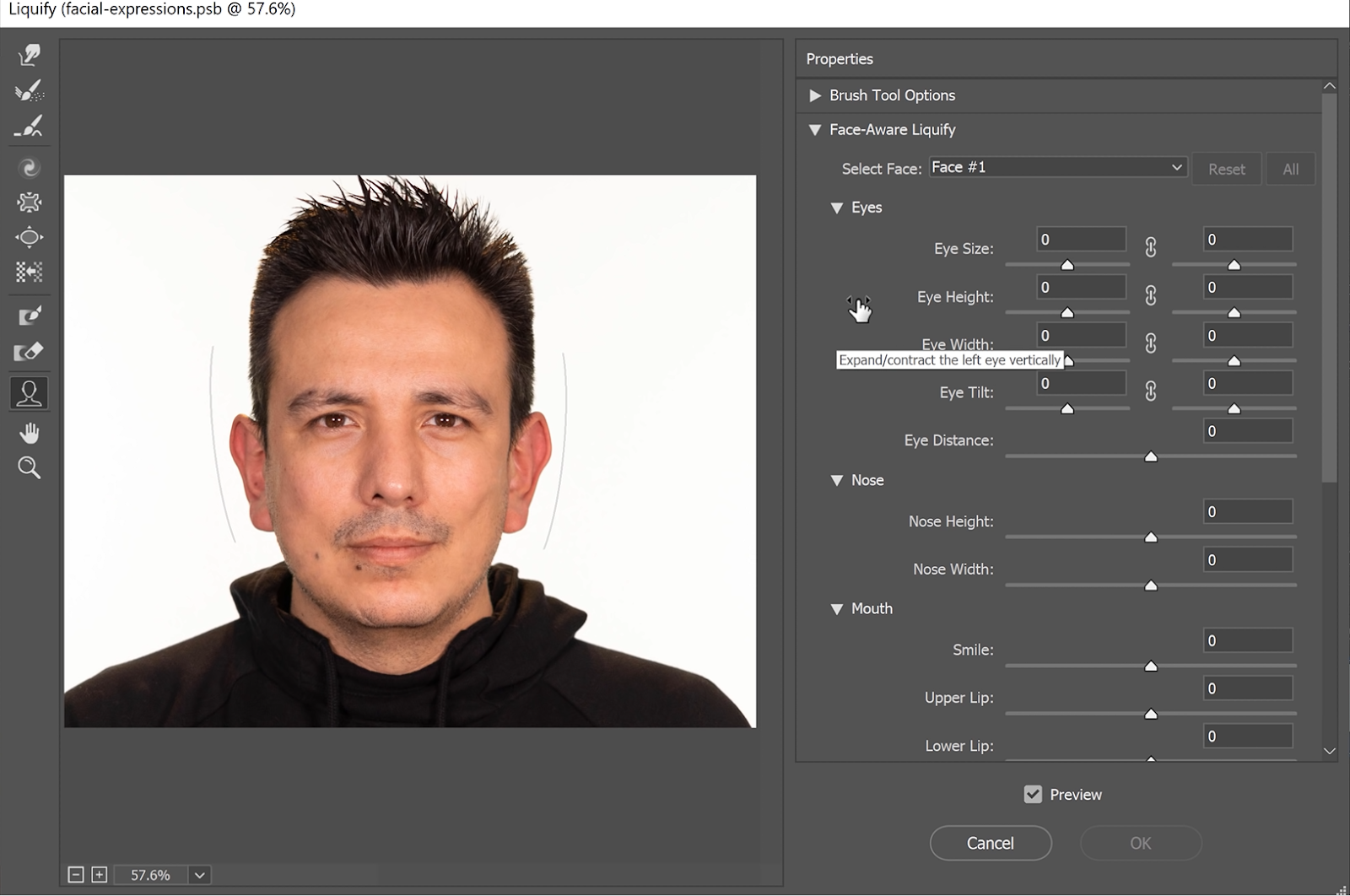 The sliders on the Properties panel that will allow you to accurately adjust each part of the face by inputting number values.