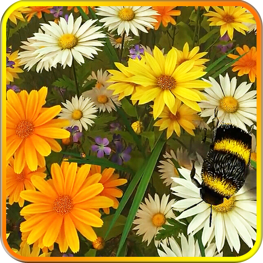 Wild Flowers 3D Live Wallpaper Icon