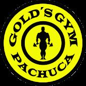 Pachuca Golds Gym