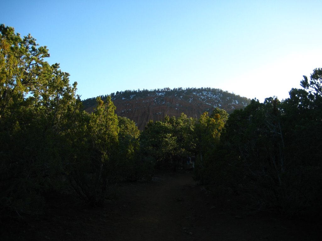 Photo: You can just make out the eroded cinder cone interior in this shot