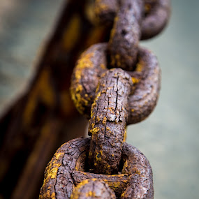 Rusted by the Sea Air by Richard States - Artistic Objects Still Life ( chain, rust, san francisco, iron, decay,  )