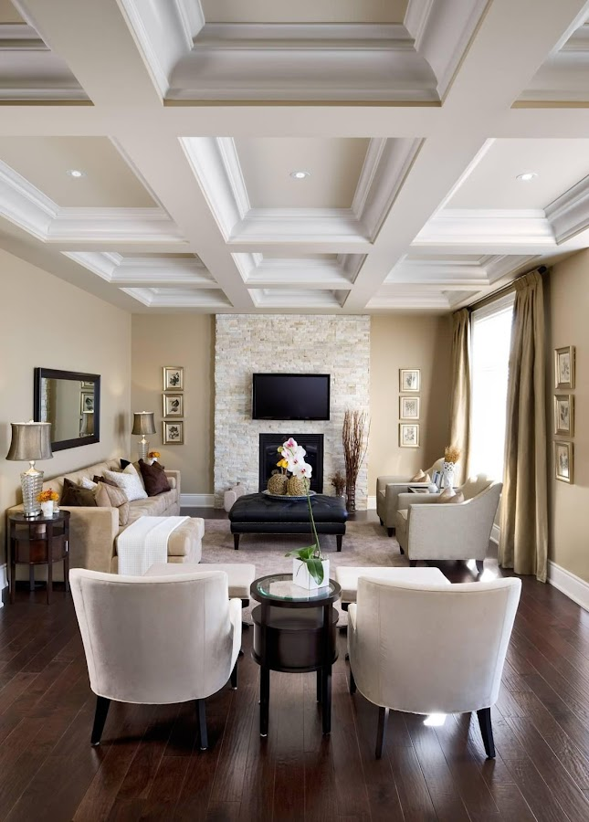 Living Room Design Ideas Screenshot