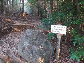 石と木の根の道
