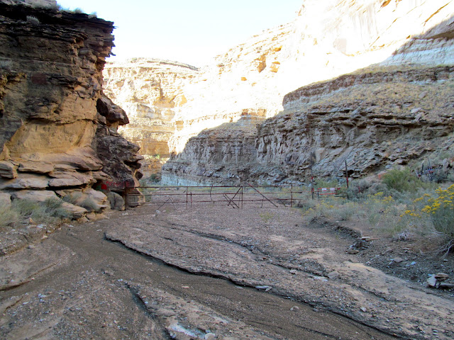 Fence across the canyon