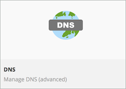 DNS icon is shown.