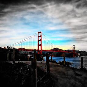 3 by Brandon Rose - City,  Street & Park  City Parks ( park, sf, golden gate, bridges, san francisco )
