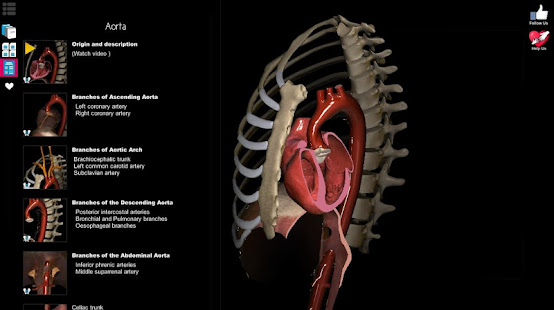 App Anatomy Learning - 3D Anatomy Atlas APK for Windows Phone
