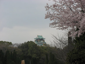 Photo: Our parting shot of the castle before hopping on the subway. Peach or Plum blossoms were blooming everywhere but the Cherry blossoms were still forming their buds.