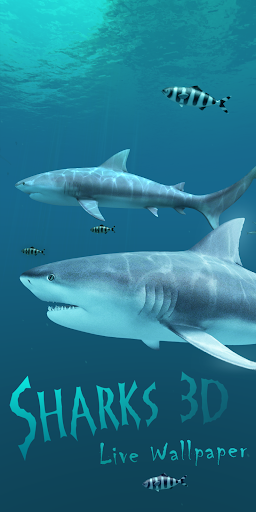Sharks 3D - Live Wallpaper  screenshots 1