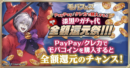 PayPay/クレカ使用