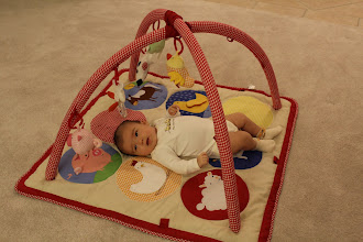 Photo: Loving her new activity gym (thanks Ting family!)