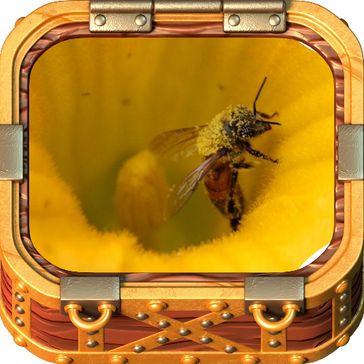 Beekeeping Made Easy 遊戲 App LOGO-硬是要APP