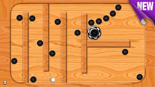 Labirinth拼圖2D
