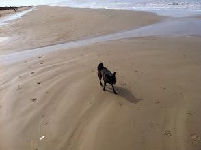 Photo: Malia on the beach in Montevideo, Uruguay