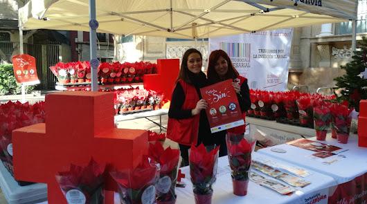 Cruz Roja logra sumar a su programa para el empleo a más de 400 empresas