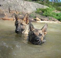 Photo: Hodet over vannet