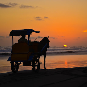 cart by Agung Wicaksono - Transportation Other ( water, sunset, horse, cart, sunrise, beach, landscape, people )