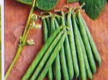 Green Bean.. Info Recipe