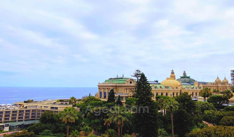 Apartment with terrace Monaco