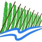 Logo for Cowiche Creek