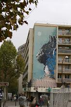 Photo: Street art - C215 -Paris XIIIe -rue nationale- bd Vincent Auriol