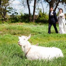 Wedding photographer Yuliya Zaichenko (Feliss). Photo of 03.06.2015
