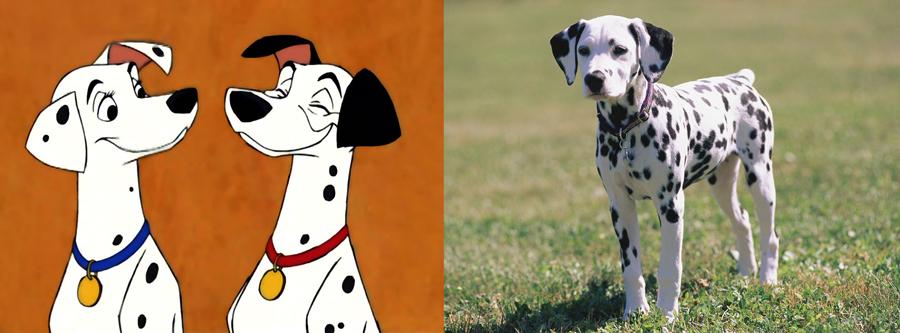 Pongo and Perdita are Dalmatian.